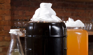 Making fermented beverages