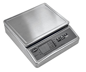 Stainless Steel Portion Control Scale