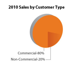 2010-Sales-Customer-Type